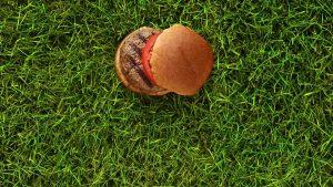 grass fed standard